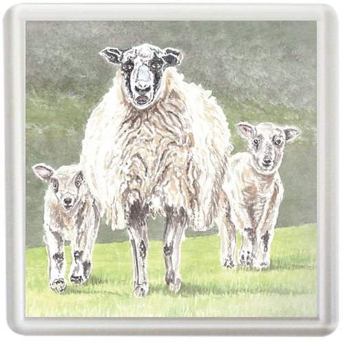 Mother With Spring Lambs - Coaster