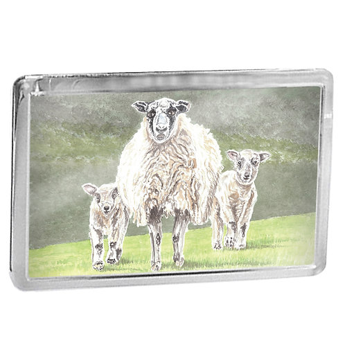 Mother Sheep with Spring Lambs - Fridge Magnet
