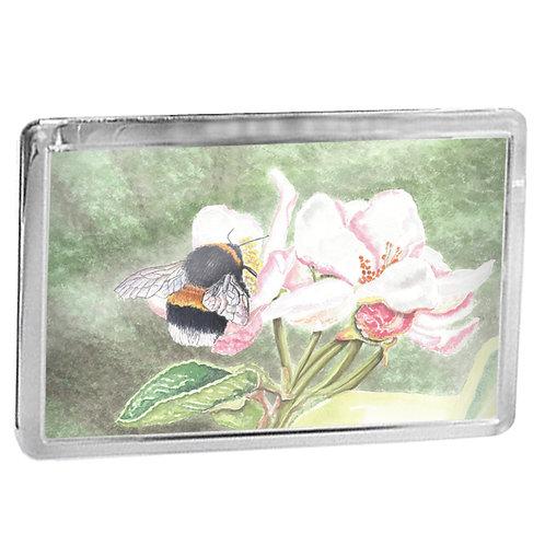 Bumble Bee On Blossom - Fridge Magnet