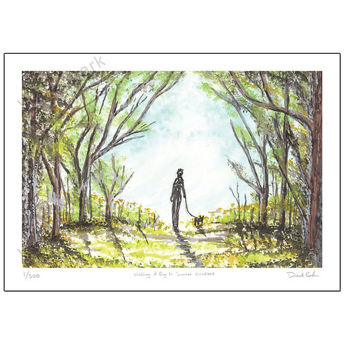 Walking A Dog In Summer Woodland, Print A4