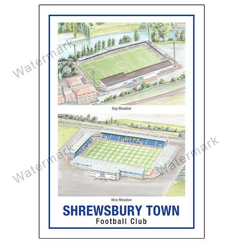 Shrewsbury Town FC - Two Stadium, Limited Edition Print A4 / A3