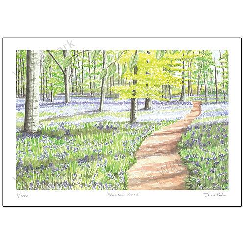 Bluebell Wood Study 1, Print A4
