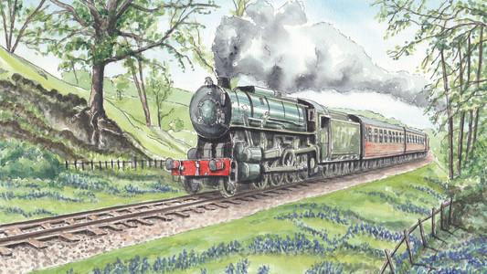 Bluebells On The Churnet Valley Railway