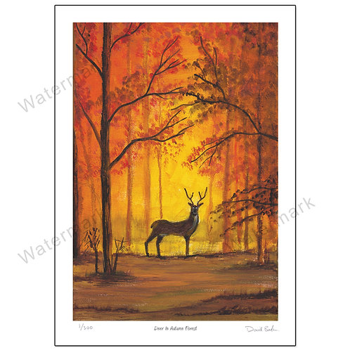 Deer In Autumn Forest, Print A4 or A3