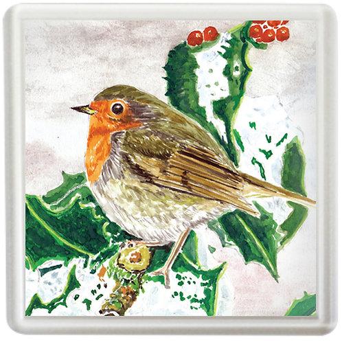 Robin - Coaster