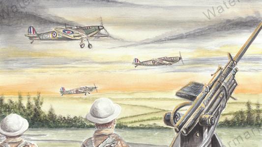 Spitfires At Dawn