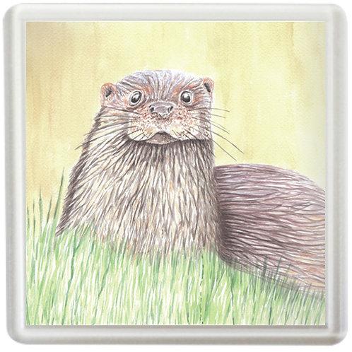 Otter - Coaster
