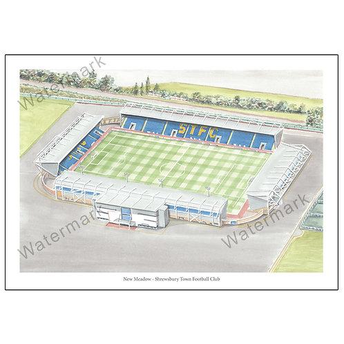 Shrewsbury Town FC - New Meadow, Limited Edition Print A4 / A3