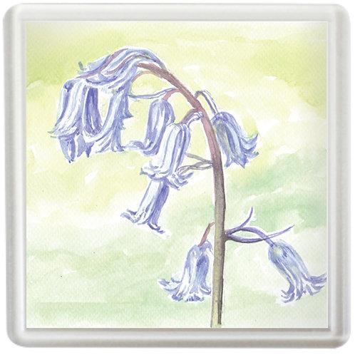 Bluebell - Coaster