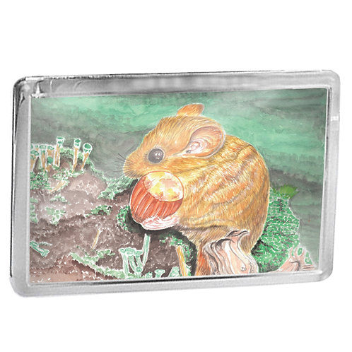 Dormouse - Fridge Magnet