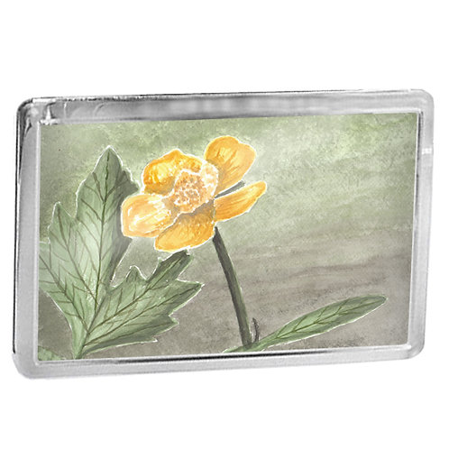Buttercup - Fridge Magnet
