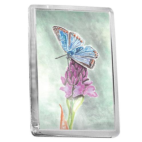 Common Blue Butterfly - Fridge Magnet