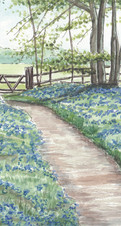Landscape--Bluebell-Wood-and-Gate-Done-S