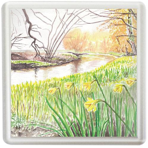 Daffodils Beside The Riverbank - Coaster