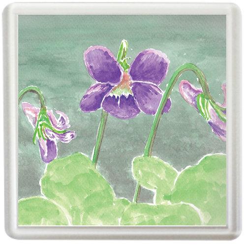 Violets - Coaster