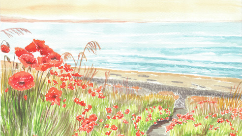 Poppies On A Shoreline