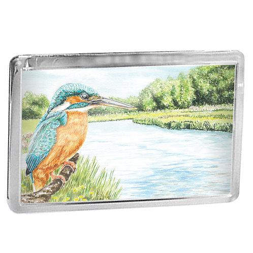 Kingfisher - Fridge Magnet