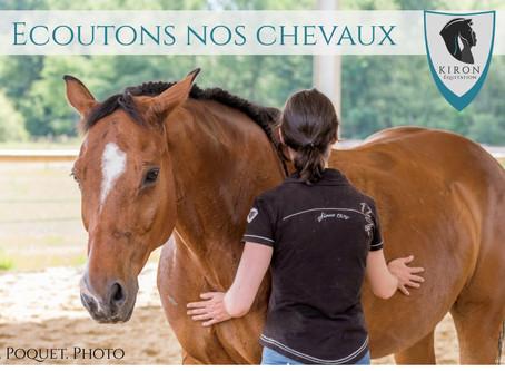 Le Cheval : une éponge émotionnelle exceptionnellement précise