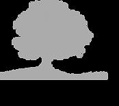arbre.png