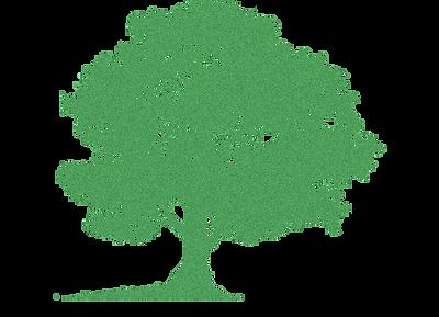 arbre%2520plar_edited_edited.png