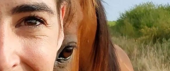 Devenez le leader juste de votre cheval