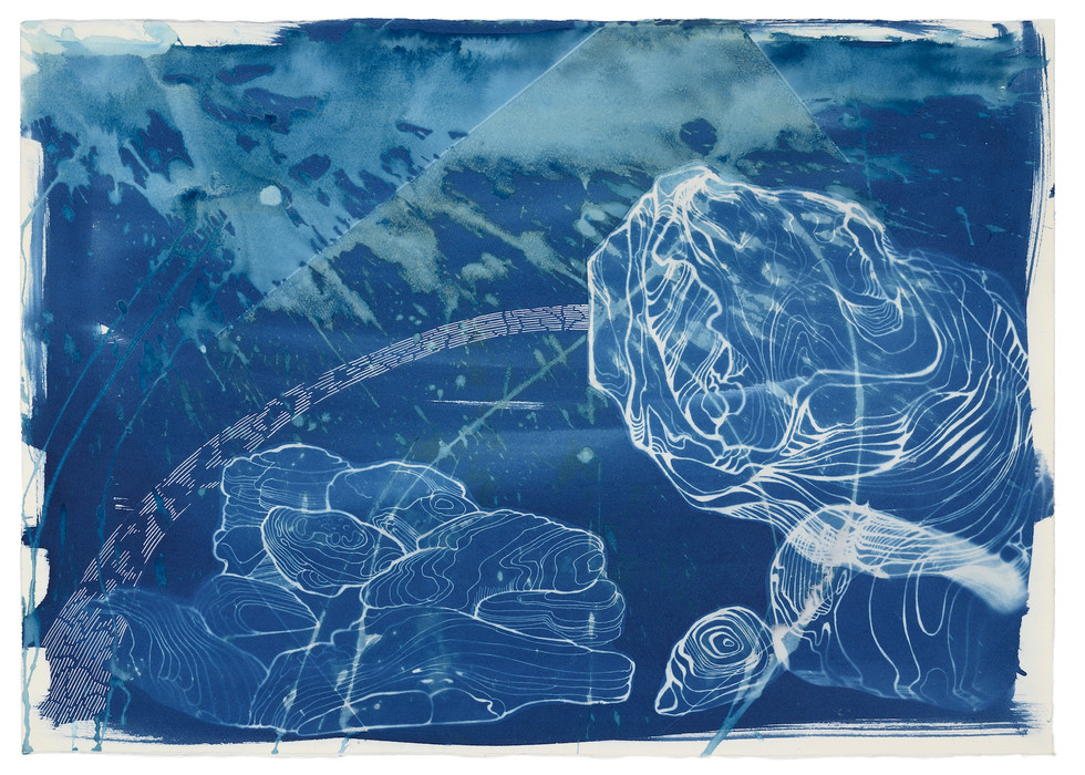 cyanotype and ink on saundres paper