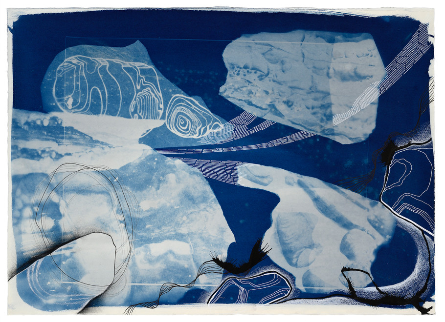 cyanotype, ink chinagraph and charcoal on saunders paper