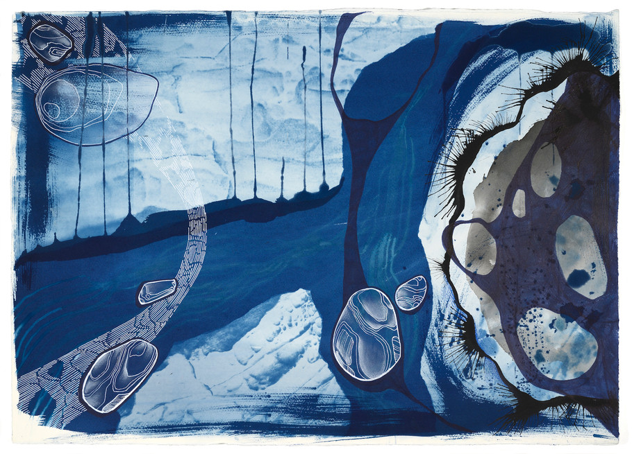 Cyanotype and Ink on Saunders Paper 70 x 50cm