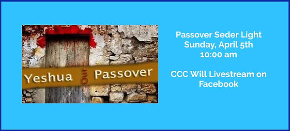 Banner 2020 Seder pic4.JPG