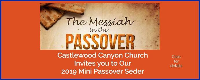 Banner 2019 Mini Seder.JPG
