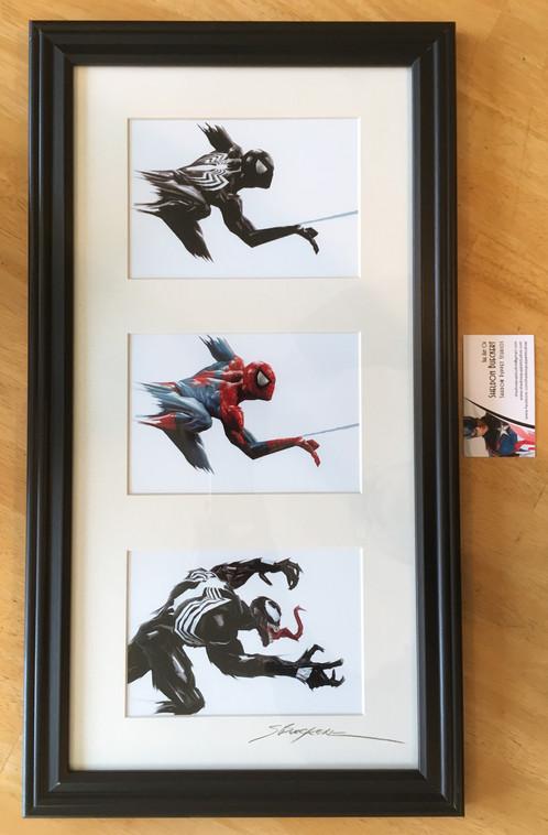 Spiderman Tri Frame Set - Classic Spidey- Black Spidey Suit - Venom