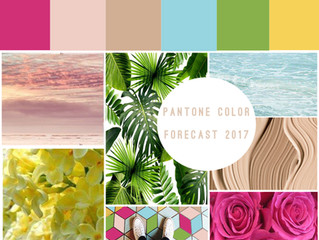 Pantone Colors Forecast 2017