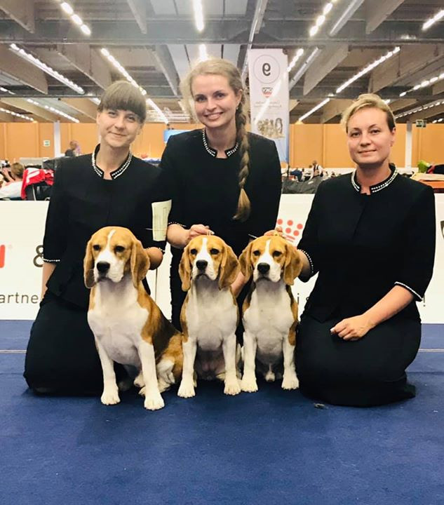 EDS-2019, Kennel Irinstyle - Best kennel of breed