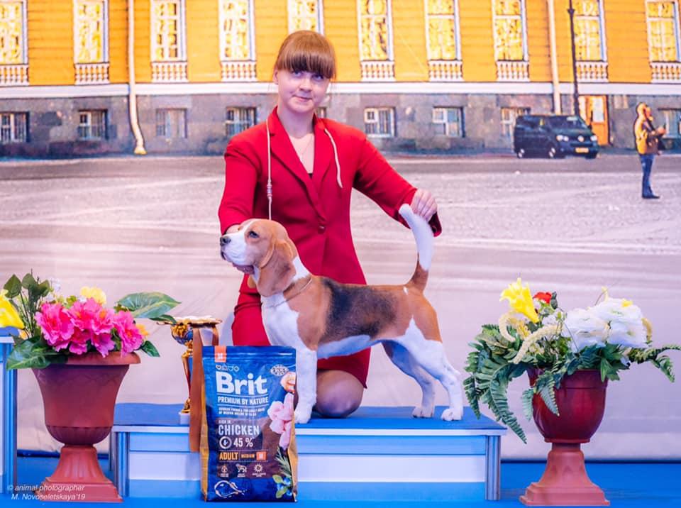 BIS junior - 3, St.Petersburg
