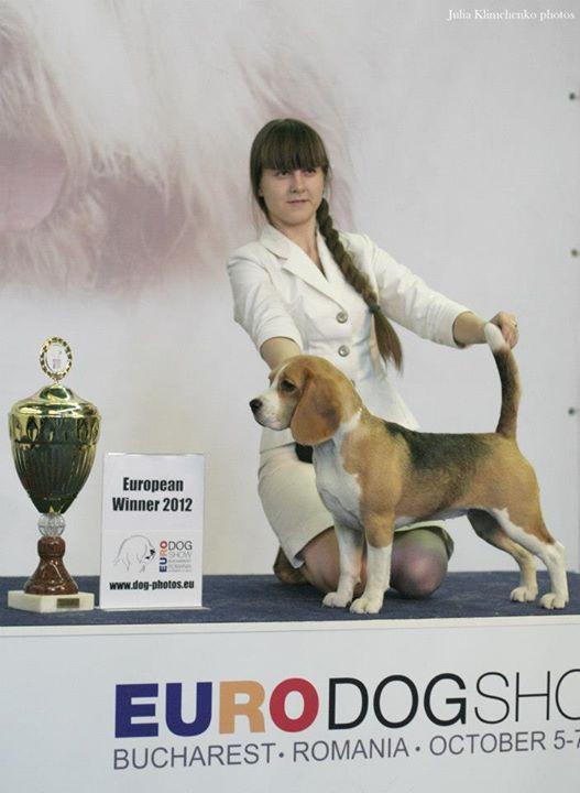 Langrigg Blueberry muffin - European winner 2012