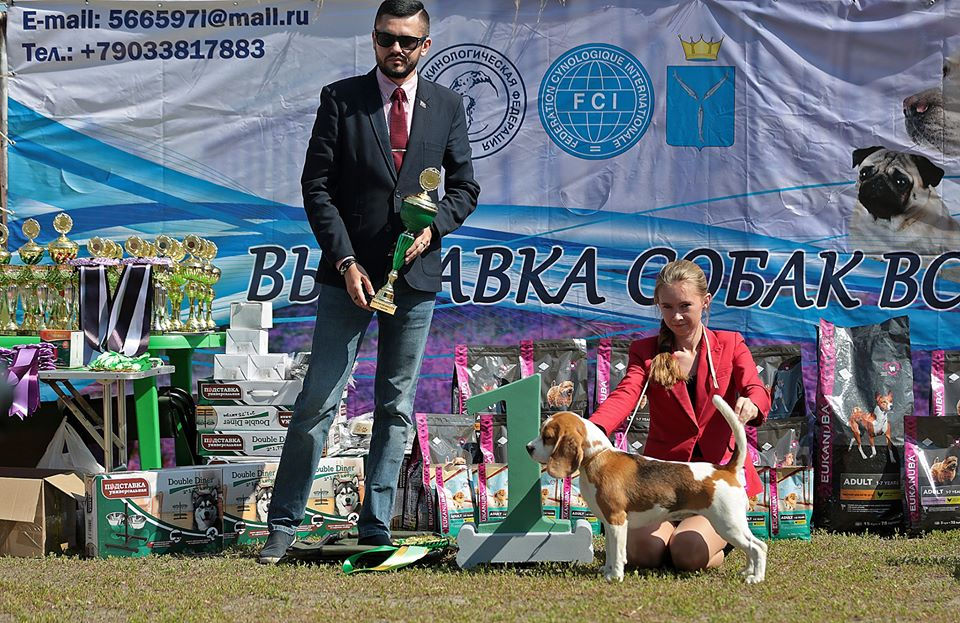 Best of breed speciatity, Saratov