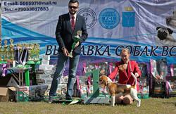 Best of breed speciatity, Saratov
