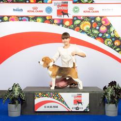 vice European winner - 2018