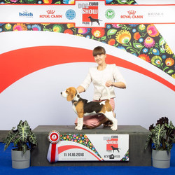 Best Puppy of Breed, Euro dog show - 201