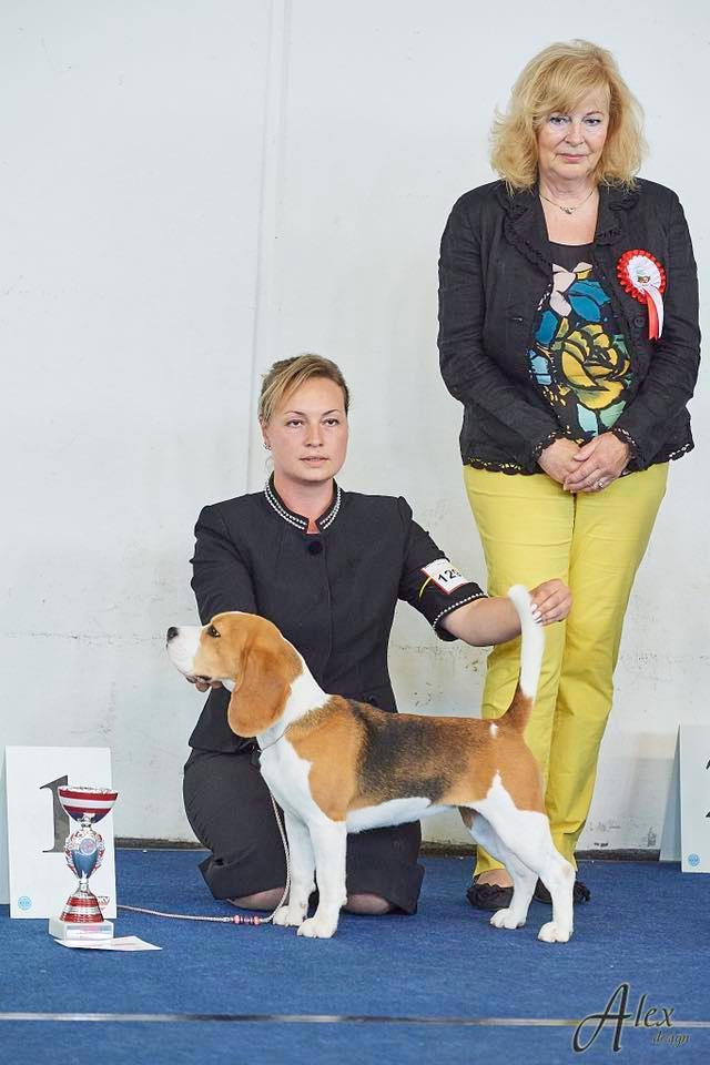 Rose - Junior European Winner, Wels, Aus