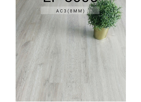 SYNCHROWOOD Laminate Flooring (EP 8005/8mm/AC3)