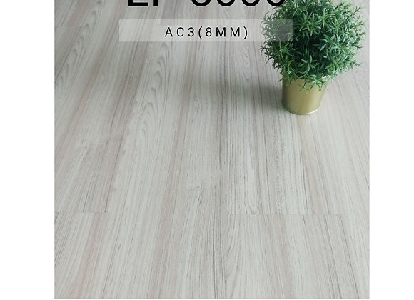 SYNCHROWOOD Laminate Flooring (EP 8006/8mm/AC3)