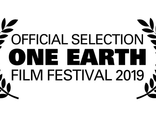 The Superfood Chain kicks off 2019 at Halton Green Screens & One Earth Film Festival