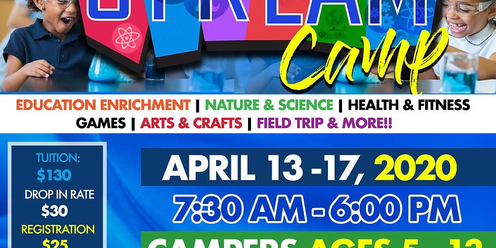 Spring S.T.R.E.A.M Virtual Camp
