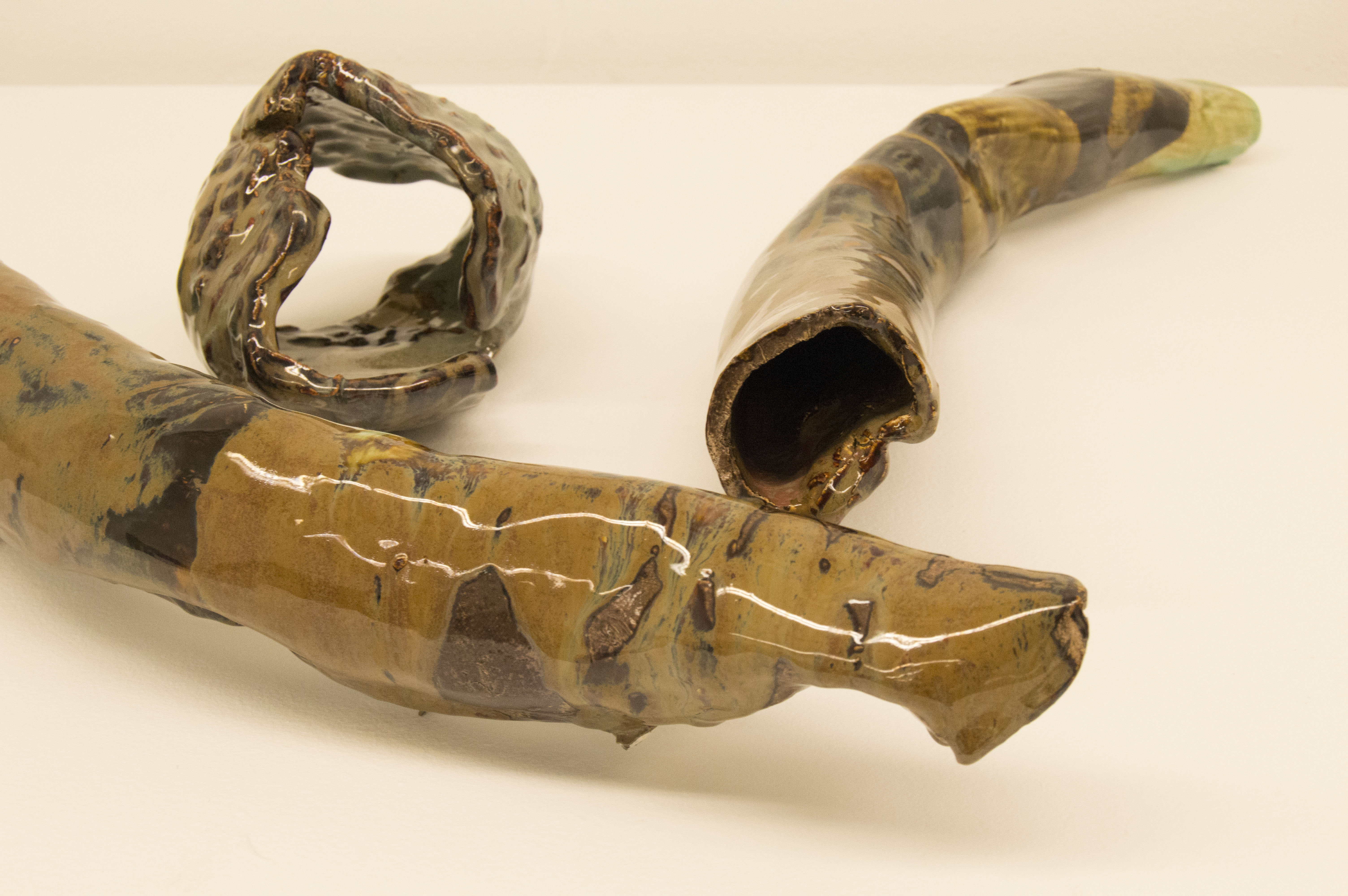 Horn and Shell