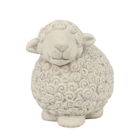 Sharon Sheep