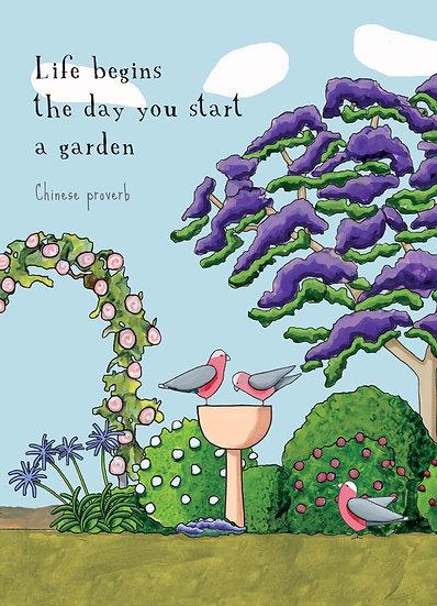 Jacaranda Garden, Gift Card