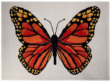 Butterfly_Tamariki_Collection_WEB_RES.jp
