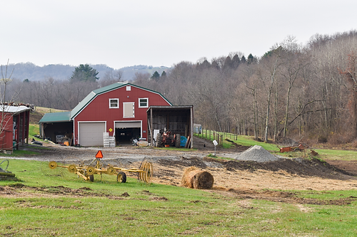 Farm3.png