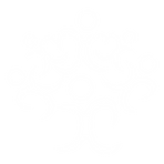 LogoMark_White.png